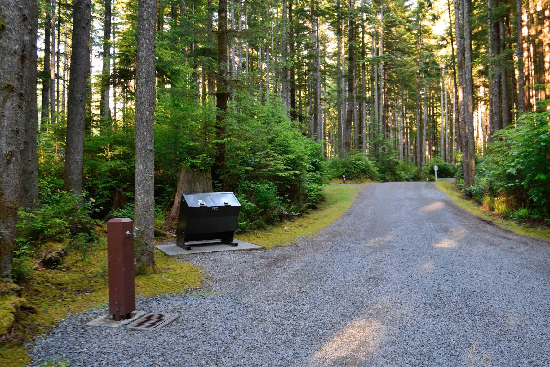 China Beach Campground